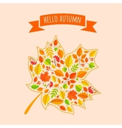 Maple leaf with fall pattern vector