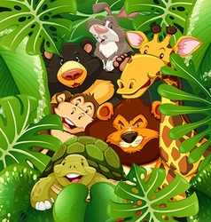 Many types of animals in the bush vector