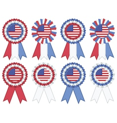 usa rosettes vector image