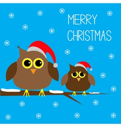 Two cute owls Christmas hats Snowflakes Merry Chri vector image