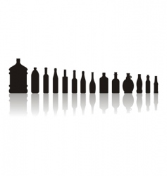 black bottles vector image