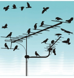 crows on television aerials vector image