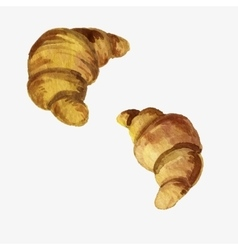 watercolor drawing croissants vector image