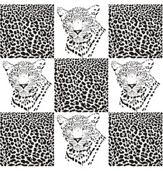 Leopard patterns for textiles vector