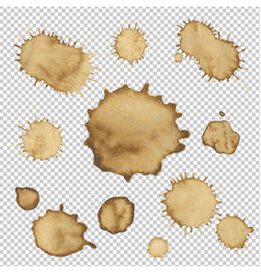 coffee stain collection vector image