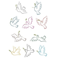 Flying doves with olive branch vector