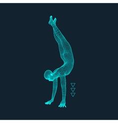 Gymnast man 3d model of man human body model body vector