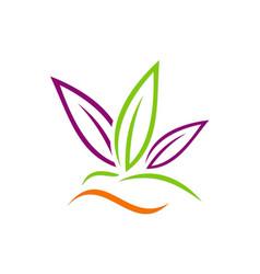 Leaf beauty abstract spa logo vector