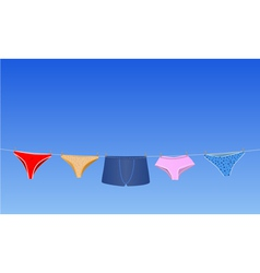 panties on the rope vector image