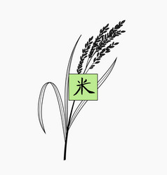 rice plant with hand written chinese character vector image