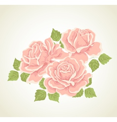 Roses with flowers bouquet vector image