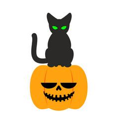 Pumpkin and black cat halloween symbol terrible vector