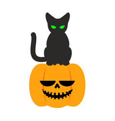 Pumpkin and black cat halloween symbol terrible vector