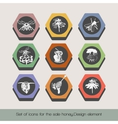 Set of icons for the sale honey 6 vector image vector image
