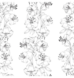 Lily flower pattern vector image vector image