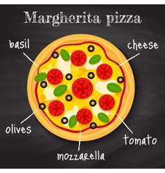 margherita pizza vector image