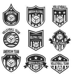 american volleyball team labels design elements vector image vector image