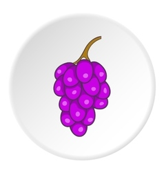 Bunch of grapes icon cartoon style vector image