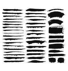 calligraphic brush strokes vector image vector image