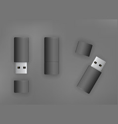 usb stick flash drive vector image