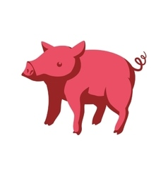 Pig icon animal farm design graphic vector