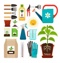 houseplants and indoor gardening icons vector image vector image