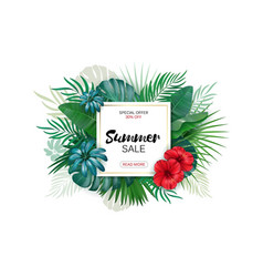 tropical paradise label over background with vector image vector image