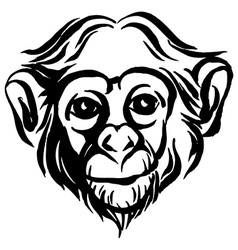 Hand drawn portrait of monkey chimpanzee black and vector