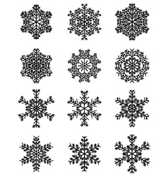 Black snowflakes vector