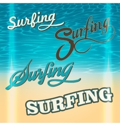 Set of summer surf typography elements vector