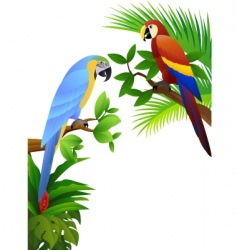 macaw vector vector image vector image