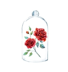 Rose in a glass case vector
