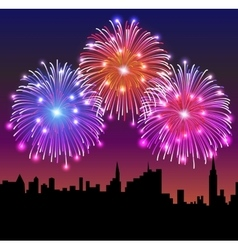 Fireworks on the night city vector