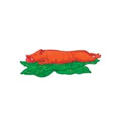 Roast pig lechon banana leaves drawing vector
