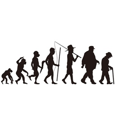 human evolution vector image