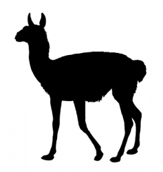 guanaco silhouette vector image vector image