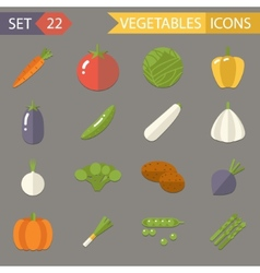Vegetables Symbols Healthy and Healthsome Food vector image vector image