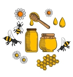 Beekeeping and farm honey icons vector