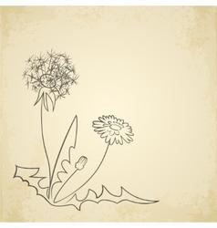 Dandelion pencil artwork on paper background vector