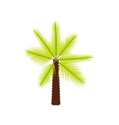 Big palm tree icon flat style vector
