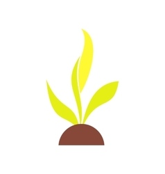 Plant seedling flat icon vector