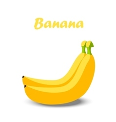 a banana vector image