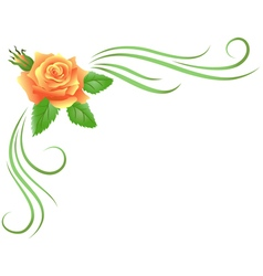 Corner floral ornament vector