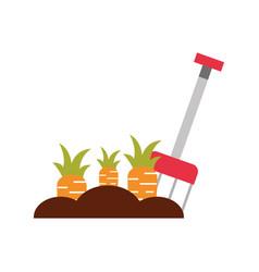 Farm rake with carrot cultivate vector
