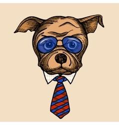 Fashion Bulldog Portrait vector image vector image