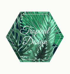 tropical design green leaves hexagon shape object vector image vector image