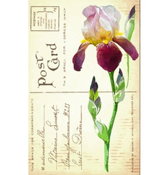 vintage postcard with flower vector image