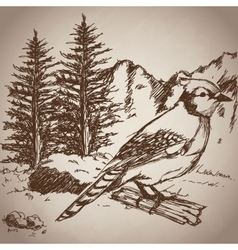 Hand drawing bird landscape vintage vector