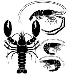 lobster shrimp and prawn vector image
