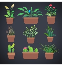 House plants flowers in pots flat icons vector image vector image